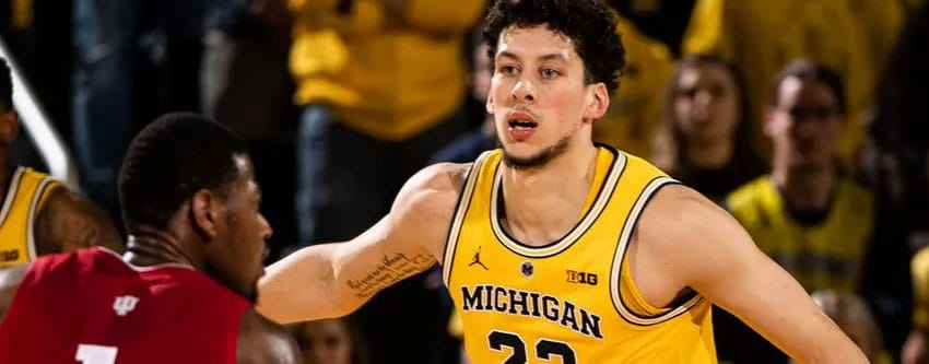 Michigan basketball playing