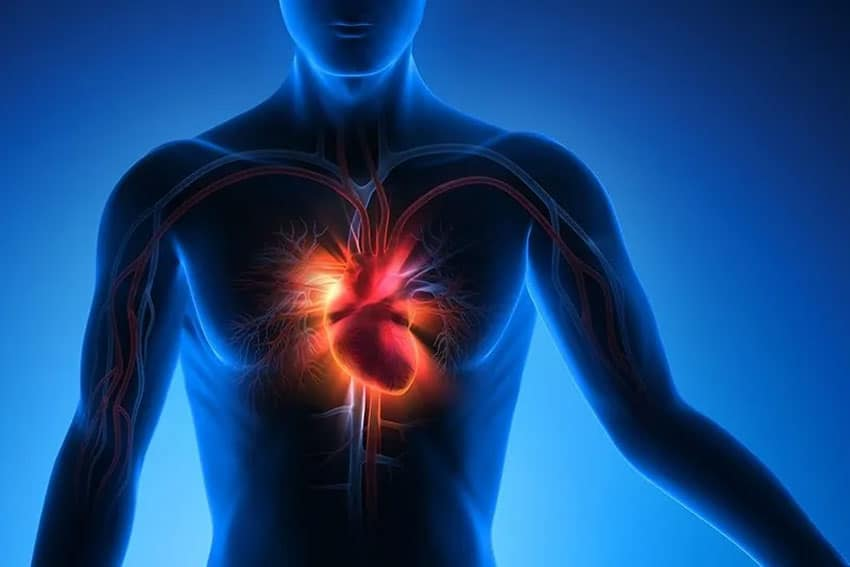 Graphic of a man showing the power of the heart